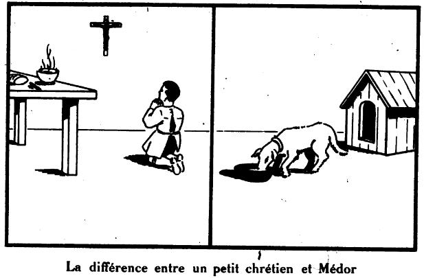 Différence avec Médor